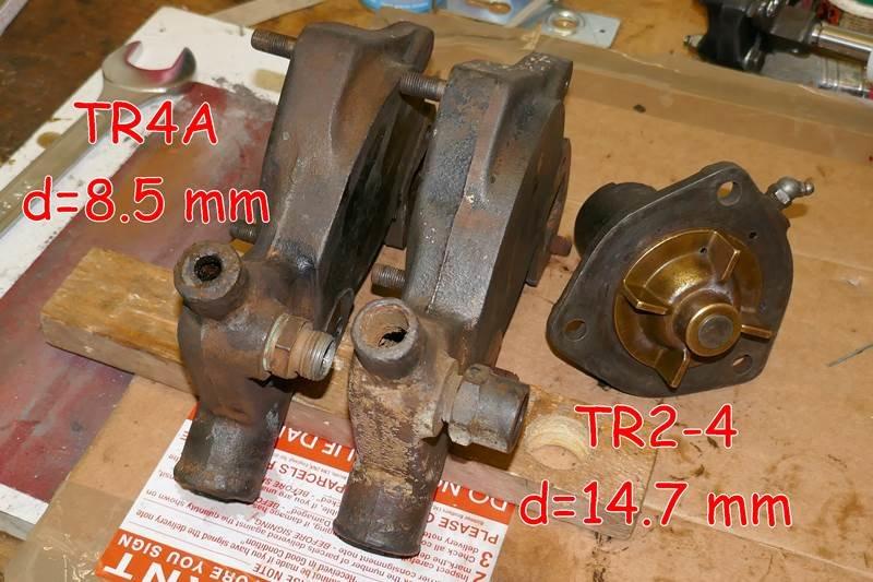 P1110096-b.JPG.39a75ec809470d5c9c31ea5b4b9c36ca.JPG