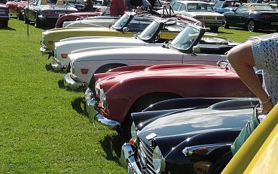 A fine line up