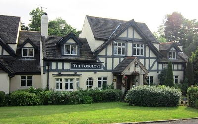 Foxglove & Inn Keepers Lodge.