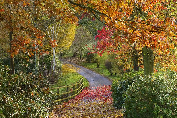 TR Register Shropshire Group Autumn Run