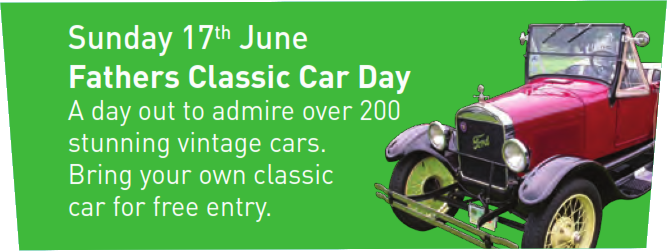 Devon Group - Father's Classic Car Day, Morwellham Quay