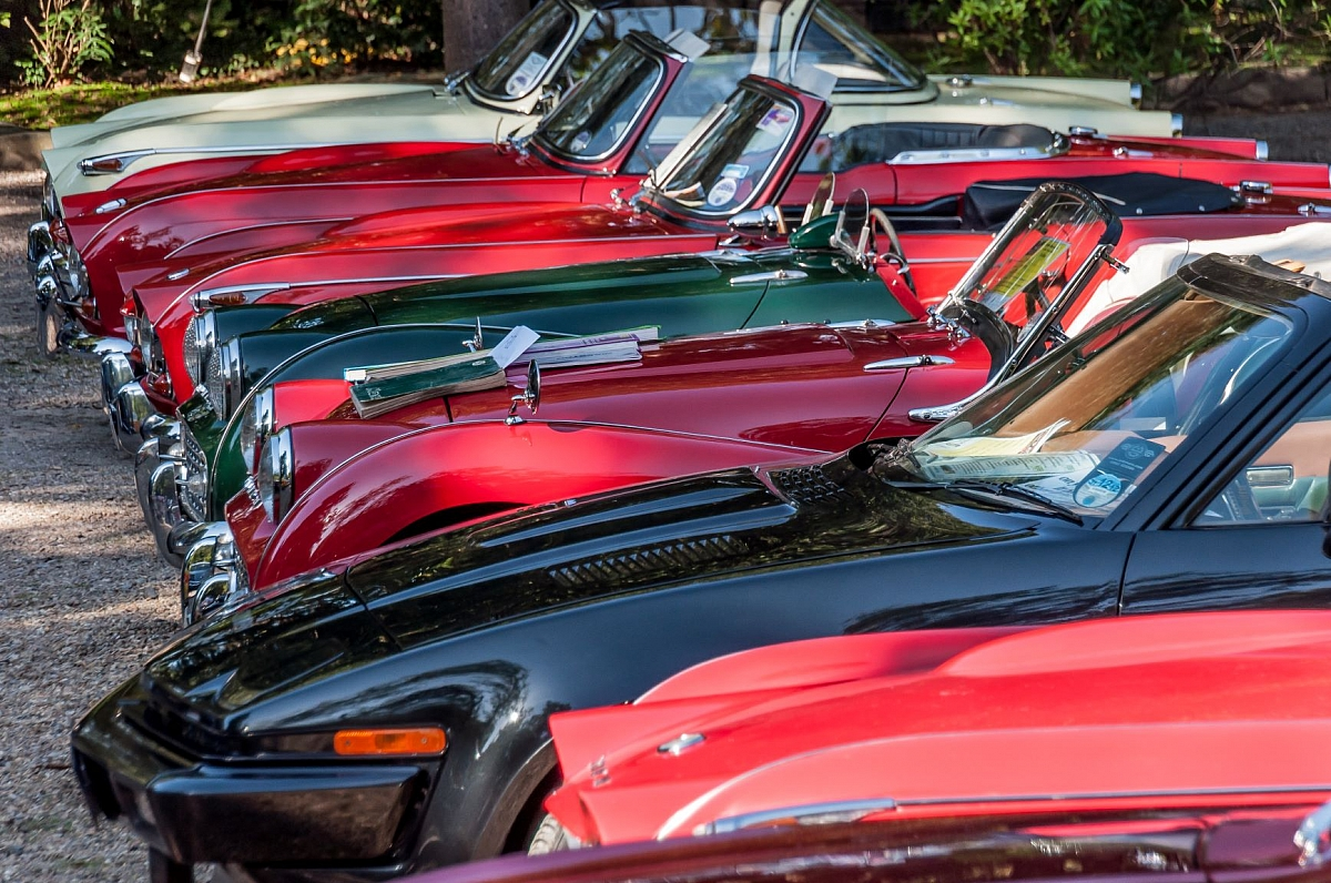 Wessex Group Invited Car Night