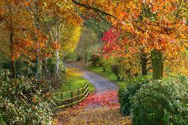 TR Register Shropshire Group Autumn Run 2019