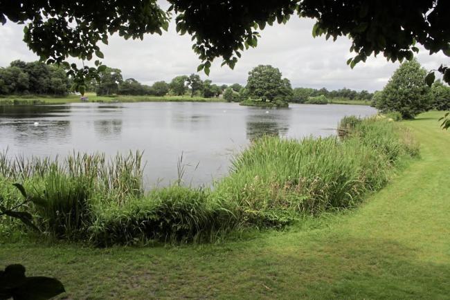 Shropshire Group - Alderford Lake Breakfast Meeting
